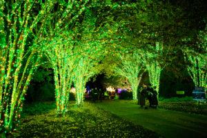 cheekwood-holiday-lights-1